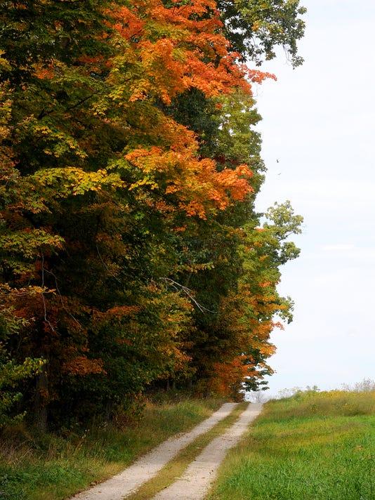 MNJ 0927 Fall foliage forecast 01.jpg