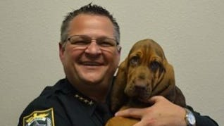 The newest member of the Brevard County Sheriff's Office needs a name  -- and your help.