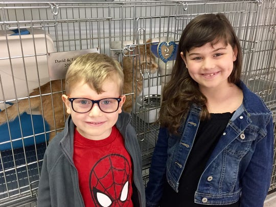 Sarah Shamus and her brother, Sam, visit the cats at the Grosse Ile Animal Shelter. Sarah, 8, organized the Kids Fun Run for Paws to benefit the shelter.
