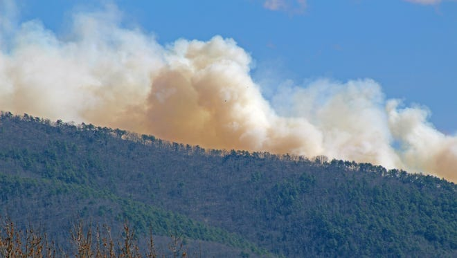 A fire burns at Saint Mary's Wilderness on March 17, 2016.