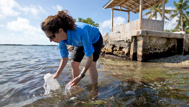 Sarah Egner, director of curriculum development at Marinelab in Key Largo, Fla., takes a water sample to check for the presence of microscopic plastics in the water.