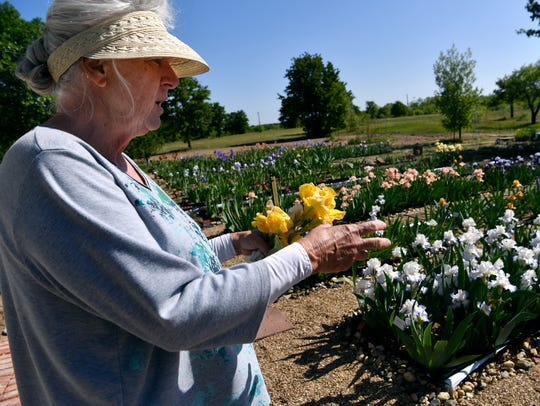 Lisa Soliz describes Friday how different it was for her learning to grow irises in Eastland County as opposed to in Fort Worth.