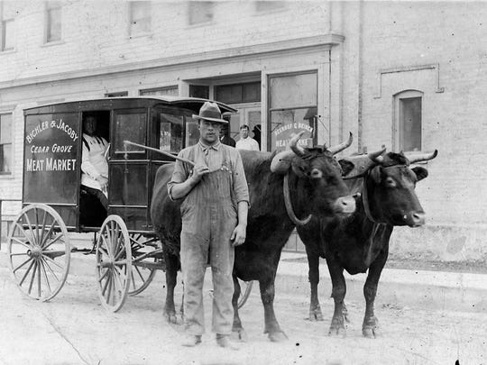 Bichler and Jacoby Meat Market, Cedar Grove, delivery wagon pulled by a team of oxen, circa 1913.