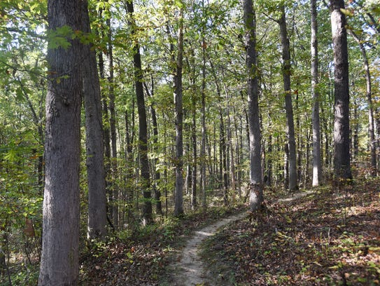 A section of trail at Endurance Park near Fultonham.