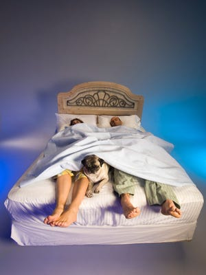 Couple asleep in bed with dog [Via MerlinFTP Drop]
