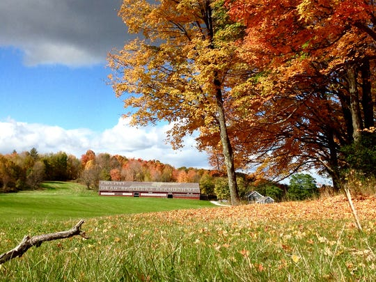 Fall foliage lights up the landscape in Brandon, a