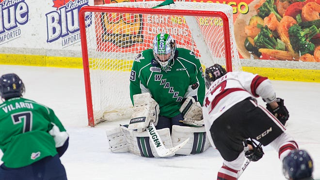 Guelph's Tyler Bertuzzi (right) is stopped Saturday night on this scoring attempt by Plymouth Whalers goalie Alex Nedeljkovic at Compuware Arena.