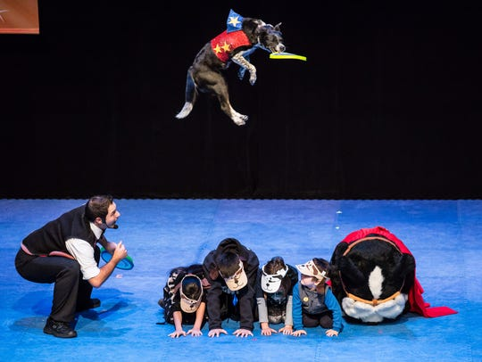 Chris Perondi's Stunt Dog Experience will have two