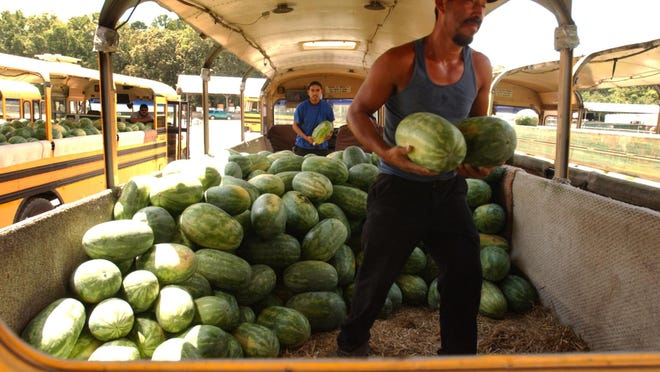 Workers unloading a converted school bus at the Laurel Farmers Auction Market.