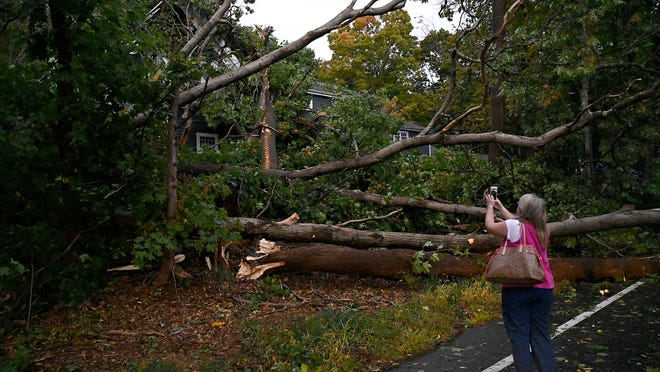 Patty Ferrick, of 91 Old Sudbury Road in Wayland, takes a photo with her cellphone after a large tree fell on her house during Wednesday night's thunderstorm. Her husband, Dan Ferrick, said the house was built circa 1830 and once belonged to noted 19th-century abolitionist Lydia Marie Child.