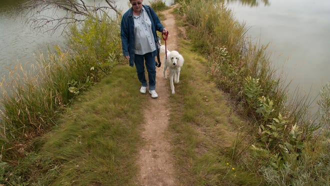 A woman walks through Fort Collins' Riverbend Ponds Natural Area in this file photo.