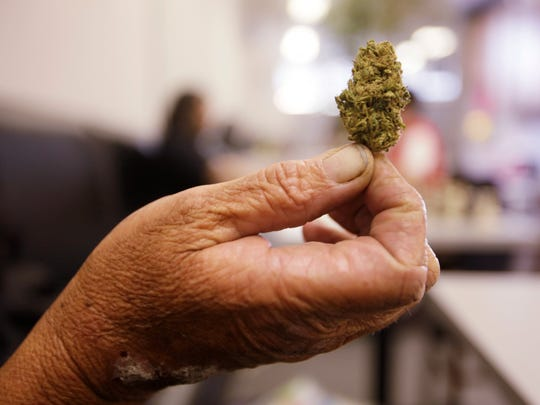 Nevada voters will consider whether to legalize recreational marijuana this November.