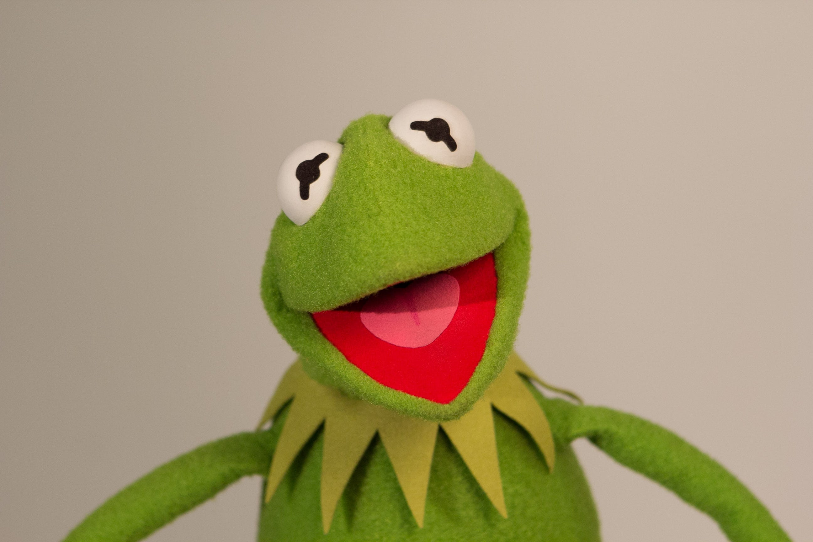 Kermit The Frog: 'I try to lead a clean life' - BBC