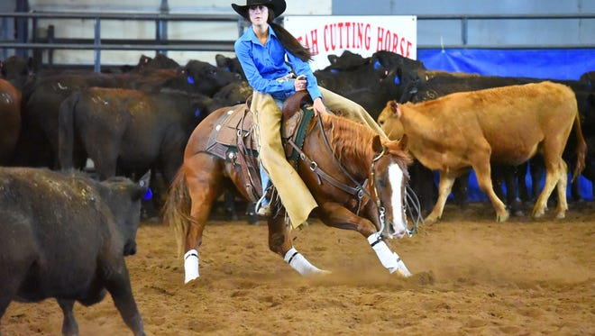 Cedar's McKenna Coronado competes in cutting at the 2017 state finals in Heber City.