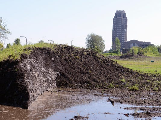 Buffalo Snow Piles