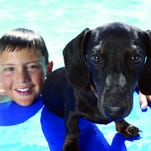 Pet Talk: Dogs and water safety