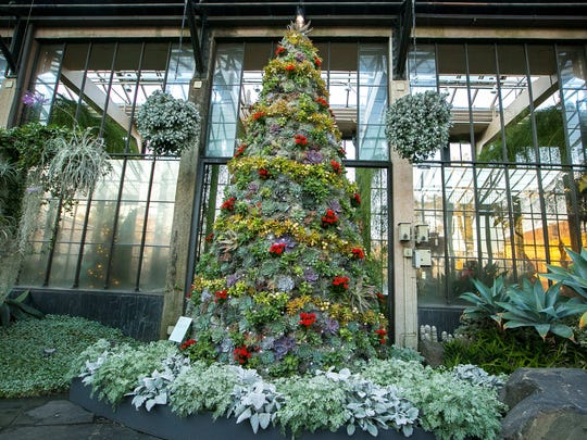 A 12-foot tree made of living succulent plants and wreathed in yellow sedum is part of the 2017 Longwood Gardens Christmas displays.