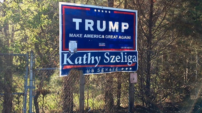 Damage from a fire can be seen on a campaign sign that touts President Donald Trump and Republican state Delegate Kathy Szeliga.
