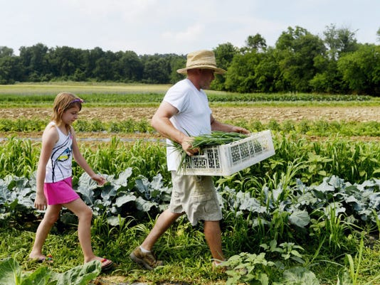Macie Kilgore, 8, follows her father Jeremy after they picked scallions for their CSA program's Monday pickup on Sunday, June 14. Jeremy Kilgore is in his fifth year as part of the Horn Farm Center's Incubator Farms Project, and has operated his Kilgore Family Farm CSA program for four years.