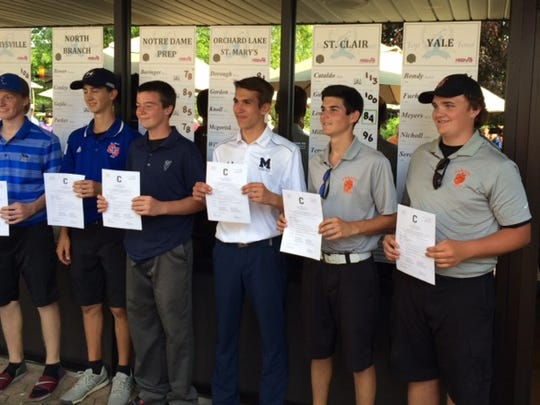 (From left to right) Cros-Lex's Matt Benson, St. Clair's Adam Lemoine, Yale's Justin Fuhrman, Marysville's Sam Palmateer, Armada's Matt Hammer and Nick Findley pose after qualifying for the Division 2 regional tournament.