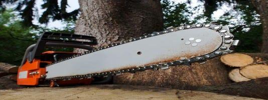 Man, 63, felled by tree in Stephens State Park