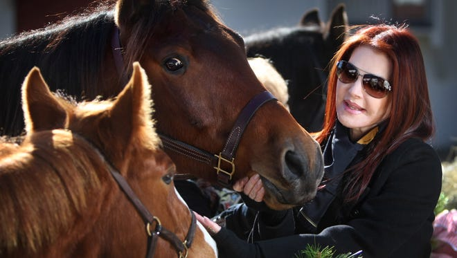 """Priscilla Presley introduces Max and Bandit, a pair of rescue horses adopted by Graceland, to fans on what would have been The King's 74th birthday in 2008. """"Graceland is a living, breathing home,"""" said Presley, and she wanted """"to keep it the way Elvis left it,"""" including the barn and horses that were a part of life for Elvis."""