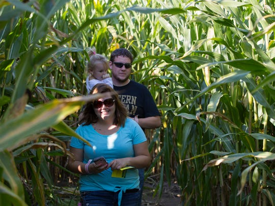 A family makes it through the corn maze at Gull Meadow