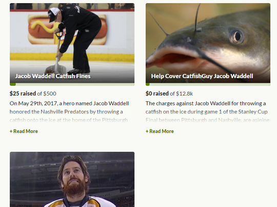 Three GoFundMe campaigns have cropped up to support catfish guy