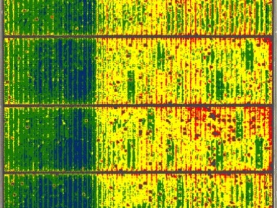 Aerial image of a 160-acre almond orchard using Ceres