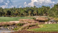 """Naples' Black Course at Tiburón Golf Clubat the Ritz-Carlton Golf Resort reopened last monthafter a seven-month """"remastering"""" project."""