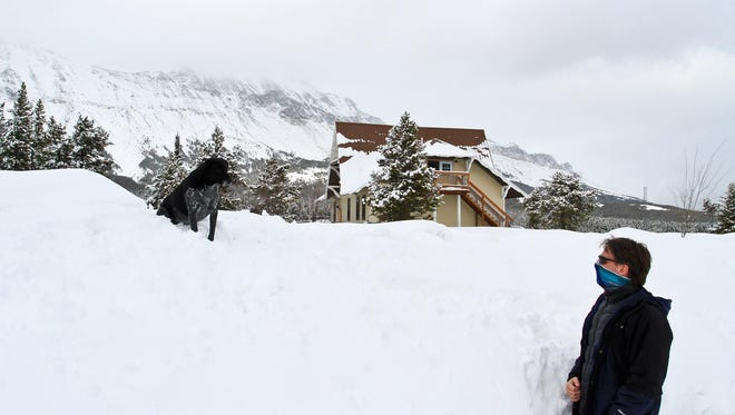 Ted Chase and his dog, Osa, explore their winter wonderland.