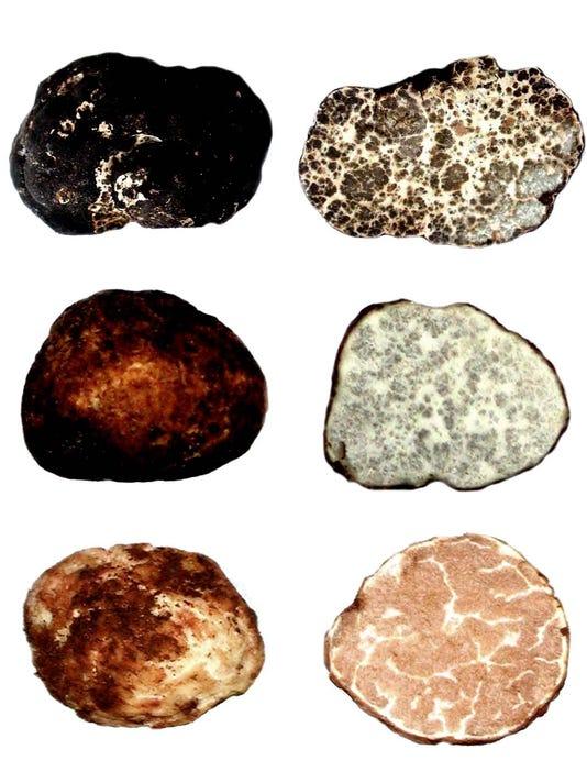 SAL1128-three truffles