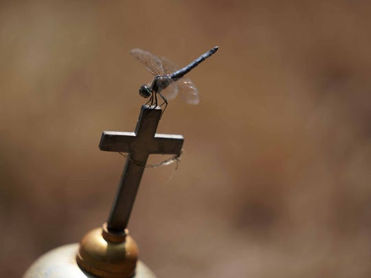 A dragonfly rest on top of a cross on a grave site