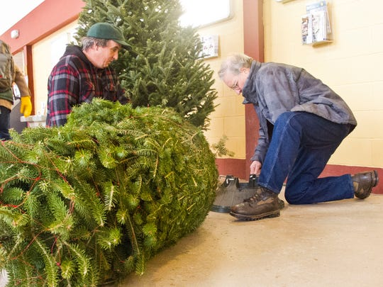 Christmas tree farmers David Beloin of Colebrook, N.H., and Russell Reay of Cuttingsville, Vt., prepare a Fraser fir for display.