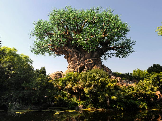 Disney's Animal Kingdom isn't a zoo so much as a theme park in the middle of a wildlife sanctuary.