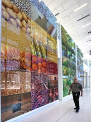 A large three-panel mural hangs in a hallway on the campus of the Dow AgroSciences headquarters in Indianapolis. The photo mural was part of the design of the research building intended to help Dow AgroSciences employees visualize what the company's products do as they leave the lab and reach customers.