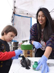 """Holly Duvall, a senior at South Salem, helps Juan Carlos Vega, 6, of Salem, create a """"Gyotaku"""" fish rubbing during Cherry Blossom Day on Saturday at the Oregon State Capitol in Salem."""