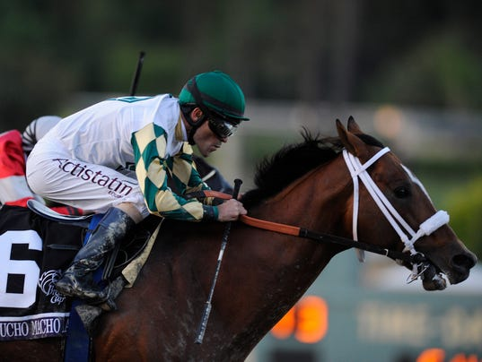 USP Horse Racing_ 30th Breeders Cup World Champion_001