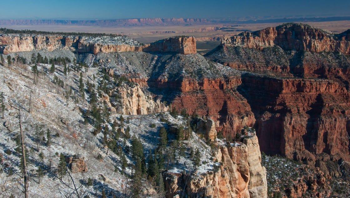 national parks visitation records