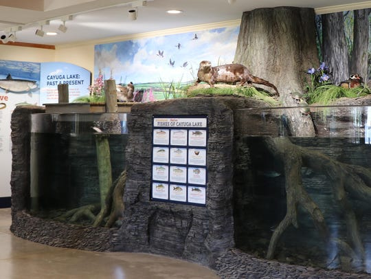 """Cayuga Lake: Past and Present"" at the Cayuga Nature"
