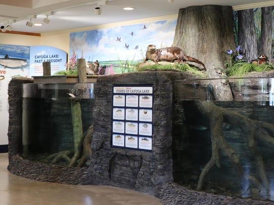 """""""Cayuga Lake: Past and Present"""" at the Cayuga Nature"""