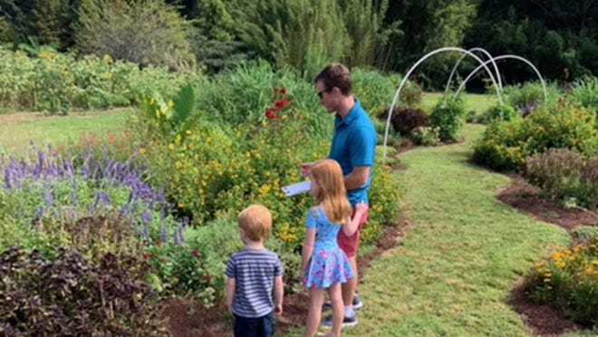 The Coastal Georgia Botanical Gardens will open its gardens for the Great Georgia Pollinator Census on Aug. 22. Shown are volunteers counting pollinators in 2019.