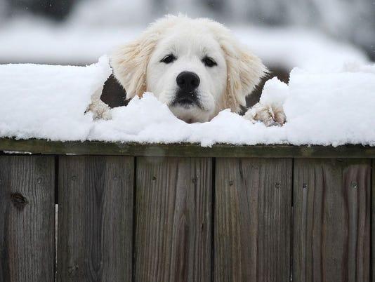 636505884491062106-635606285488568812-AP-Winter-Weather-Virginia.jpg