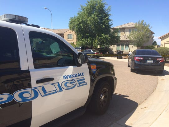 An Avondale mother admitted to drowning her twin boys