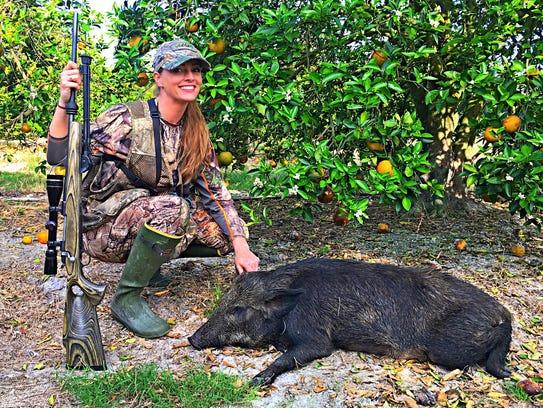 A hog killed in an orange grove in Florida.
