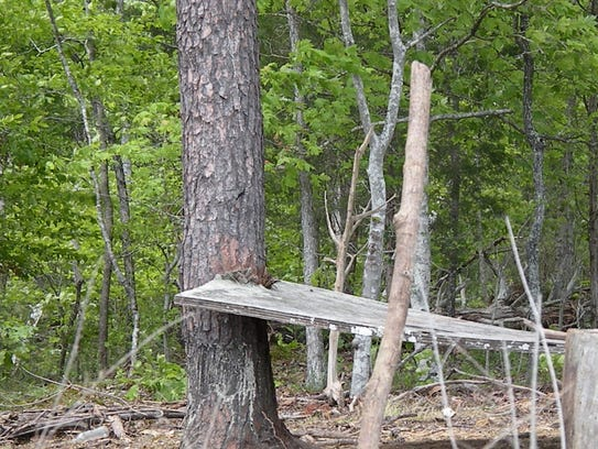 The dilapidated picnic table is evidence that Island