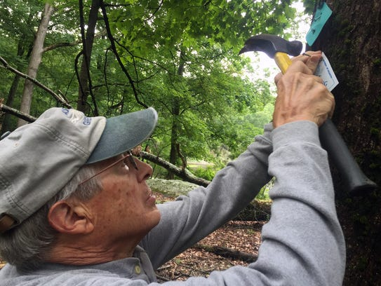 Lake Hopatcong Foundation Trail Volunteer Keith Schilling