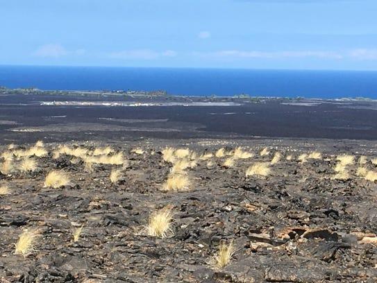 A view of the Kailua-Kona, Hawaii landscape.