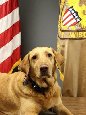 K9 Jake of the Outagamie County Sheriff's Department died Monday after an illness.