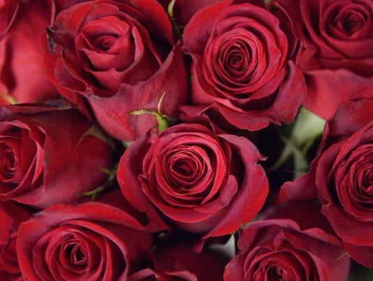 636533824515148841-20090201-0212-met-flowers2.jpg